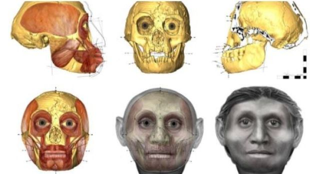 Dr Hayes works with the skeletal remains of modern humans and ancient hominins to approximate their facial appearance, ...