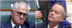 Prime Minister Malcolm Turnbull and Opposition Leader Bill Shorten should agree to audit the citizenship status of all MPs.