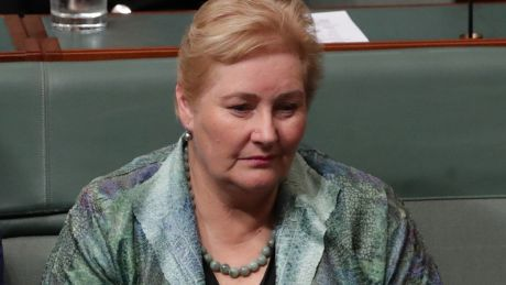 Ann Sudmalis during question time in Parliament House in Canberra on Tuesday.