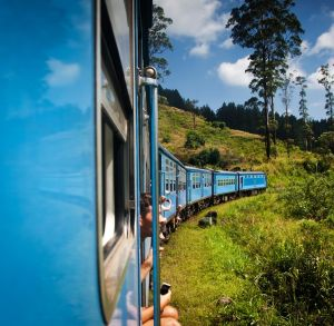 Tiding a train among tea plantations in the country's highlands.