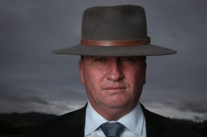 Barnaby Joyce is the fifth federal MP to be referred to the High Court over their citizenship status in the past month.