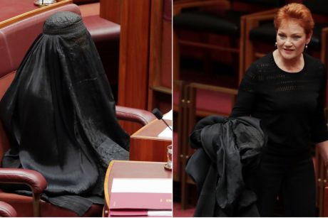 In a race to the bottom One Nation's Pauline Hanson outdid herself by appearing in the Senate in a burqa, or full ...