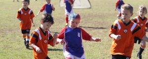 Compared with politics these days, Under-6 soccer players are the acme of teamwork.
