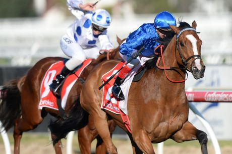 Beyond doubt: Craig Williams and Hartnell win the PB Lawrence Stakes.