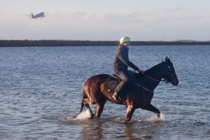 Take off: Ben Cadden rides Winx in a recovery session with Foxplay on Sunday.