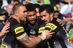 Red-hot: Penrith Panthers have won seven consecutive games.