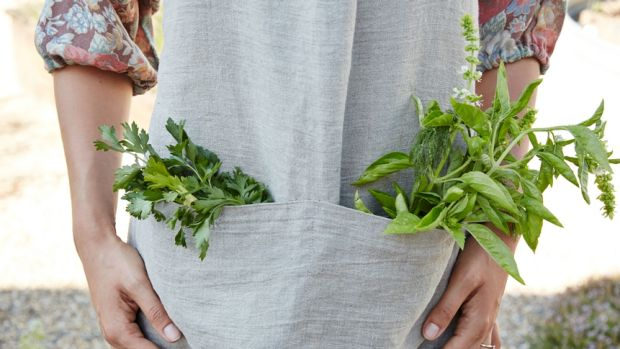 Eating kale and other leafy greens could keep your brain young
