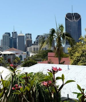 Brisbane can expect crisp mornings and sunny days this weekend.