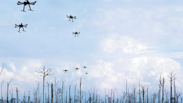 At the moment, the planet loses about six billion trees each year. Seed-planting drones may represent the most ...
