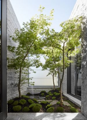Home design how passive courtyard gardens bring fresh beauty to
