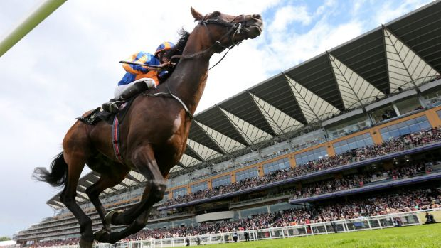 Jardine eyeing Melbourne Cup bid for Ebor hero Nakeeta