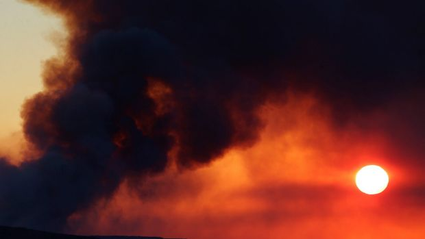 Fire at Kurnell destroys 350 hectares