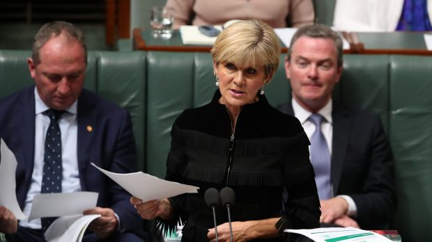 Foreign Affairs Minister Julie Bishop during question time on Wednesday.