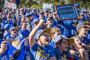True blue: Western Force supporters may have some cause for hope as the Indo-Pacific Competition looms.