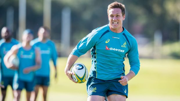 Wallabies winger Haylett-Petty out for 3 months