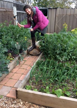 Heather Kerr swinging the mattock in her vegie garden in Hughes.