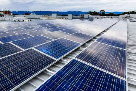 Solar panels at Shellharbour in NSW: the rollout is accelerating as businesses try to keep a lid on energy prices.