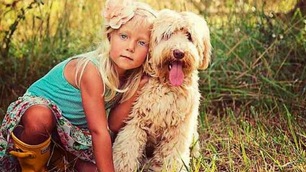 The fraudulent page is called 'Labradoodle Puppies For Adpotion' on Facebook.