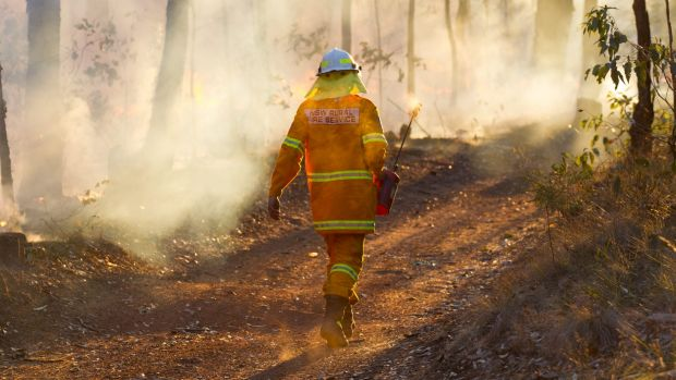 An RFS firefighter battles an unrelated fire at Richmond Vale on Wednesday.
