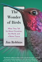 The Wonder of Birds. By Jim Robbins.
