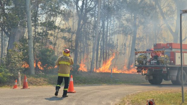 The fire on Filter Road, West Nowra.