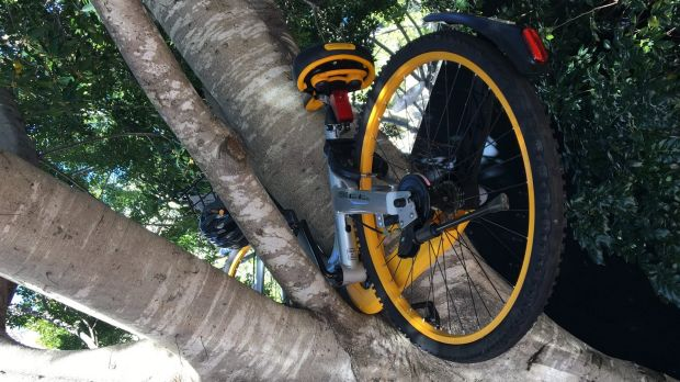 An illegally dumped Obike in Sydney's Darling Harbour precinct.