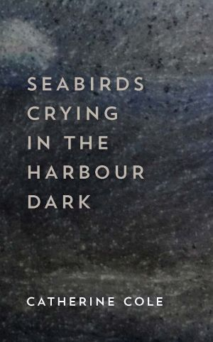 <i>Seabirds Crying in the Harbour Dark</i>, by Catherine Cole.