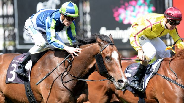 Mark Zahra on Keen Array (left) winning race 4 on Saturday.