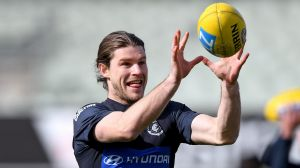 Carlton are said to be talking to the Crows about Bryce Gibbs.