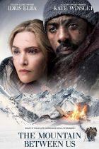 Poster for the film The Mountain Between Us.