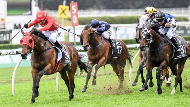 Title defence: Redzel dashes to victory in last year's Everest and will return in YuLong's slot in October