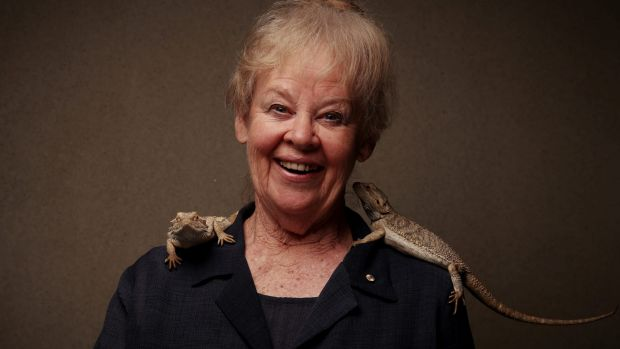Gene genie: Professor Jenny Graves with bearded dragons she named Malcolm and Bill for the announcement she was awarded ...