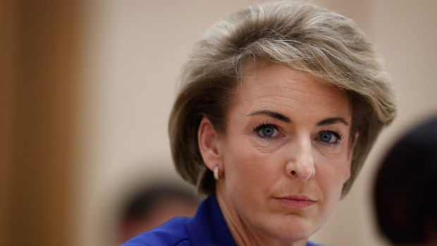 """Earlier in the day, Employment Minister Michaelia Cash said: """"I can assure you that I found out about the raids as they ..."""