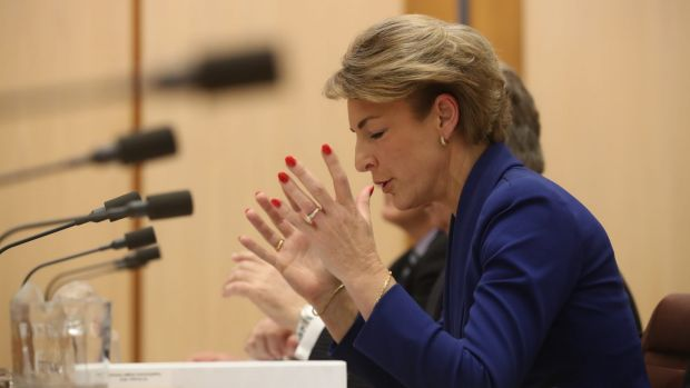 Employment Minister Michaelia Cash denies she misled Parliament about her office's involvement after a staffer admitted ...