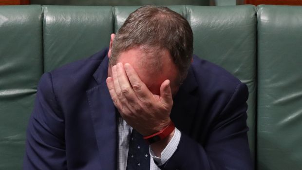 Deputy Prime Minister Barnaby Joyce during question time on Thursday.