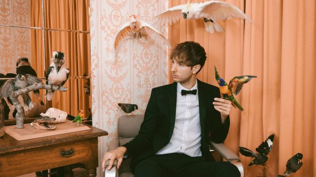 Indie pop star Jeremy Neale is on the verge of releasing his debut album Getting the Team Back Together.