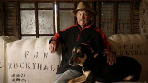 Fred Whitby 94 year old grazier in his he shearing shed with working dog Snap on his property Sunnyside Villa at Rocky ...
