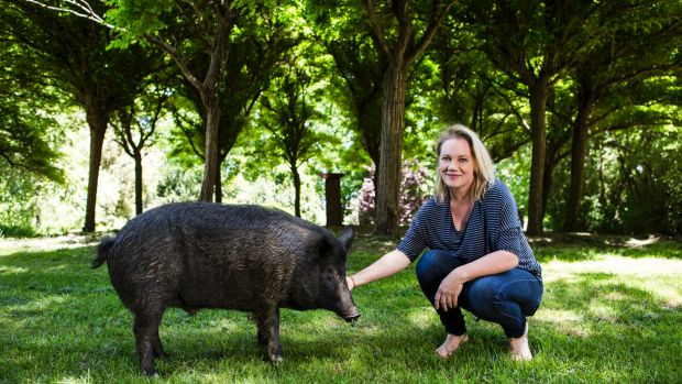 Mona Farm and Historic Home owner Rose Deo with Daddy Pig, the property's resident pet porker.
