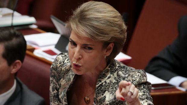Senator Michaelia Cash in the Senate on Tuesday.