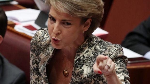 Employment Minister Michaelia Cash oversees a remuneration policy that left about 40 per cent of APS staff without a pay ...