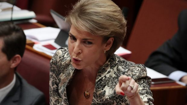 Public Service Minister Michaelia Cash rejected accusations she had turned the public service commission into an ...
