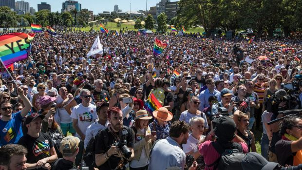 A large crowd gathered at Prince Alfred Park to hear the result.