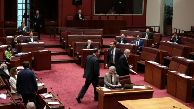 Coalition Senators return to their seats after crossing the floor during a notice of motion moved by Senator Bernardi.