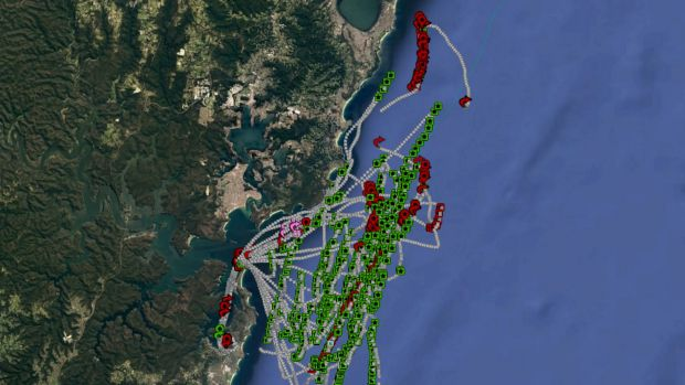 The humpback migration tracks in the area that Asset Energy proposed seismic testing.