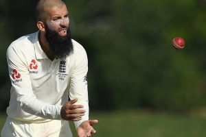 Key man: Mooen Ali's off-spin and late-order runs will be crucial in deciding the Ashes.