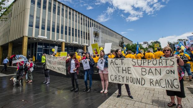 Unions, greyhound owners and greyhound liberationists all protest in Canberra's Garema Place and outside the Legislative ...