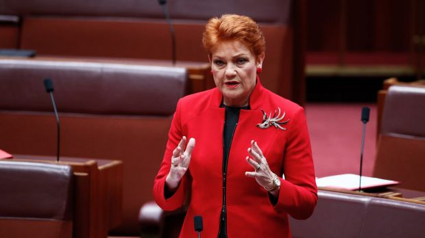 One Nation leader senator Pauline Hanson in the Senate on Tuesday.