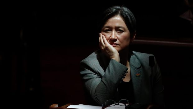 Leader of the Opposition in the Senate, Penny Wong, during a divison on amendments on the Marriage Amendment Bill on Tuesday.