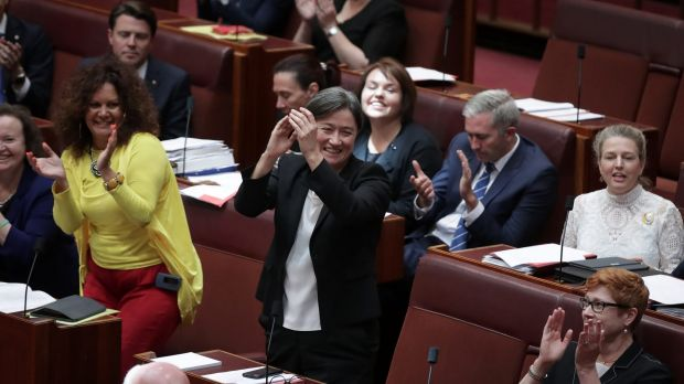 Labor's Penny Wong claps after the same-sex marriage bill passed the Senate on Wednesday.