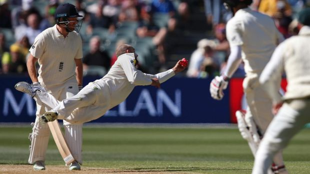 What a catch: Off his own bowling, Nathan Lyon flies through the air to snare Moeen Ali.